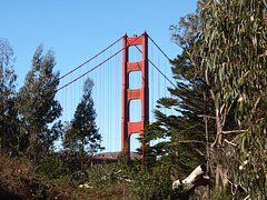Golden Gate Bridge (p2013963)
