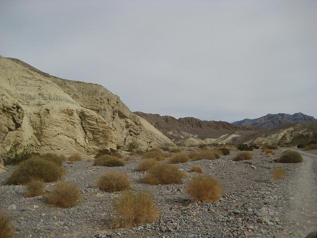 DV Canyons 64