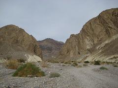 DV Canyons 66