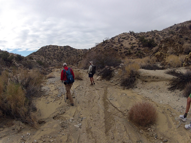 Long Canyon (01905)