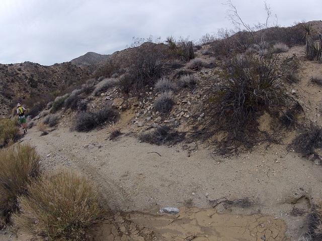Long Canyon (01942)