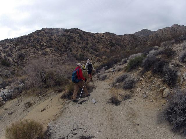 Long Canyon (01943)
