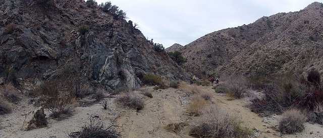 Long Canyon (11021)