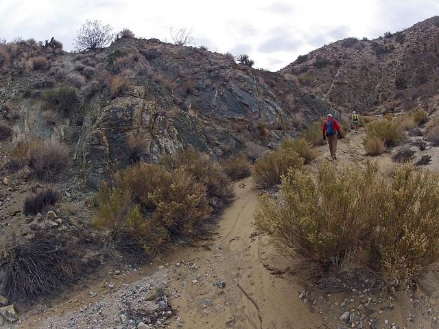 Long Canyon (21042)