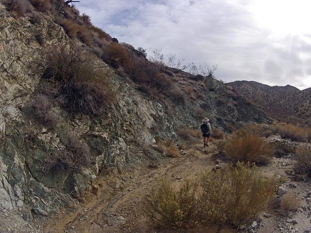 Long Canyon (21072)