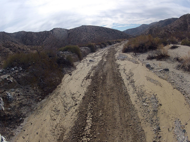 Long Canyon (21285)