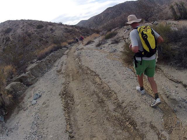 Long Canyon (21372)