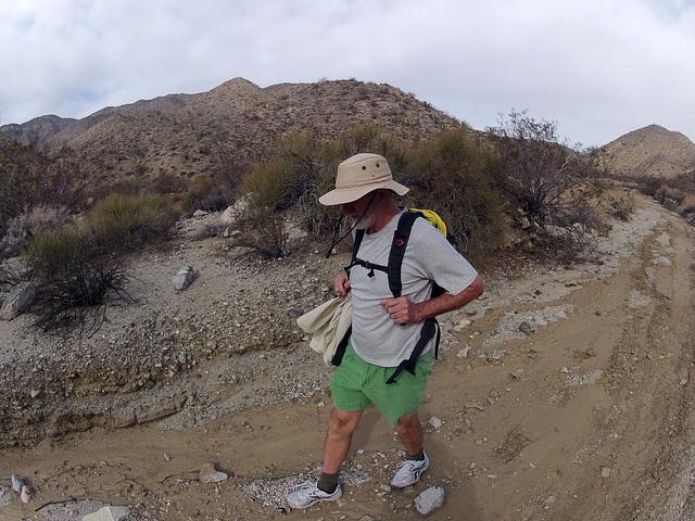 Long Canyon (21380)