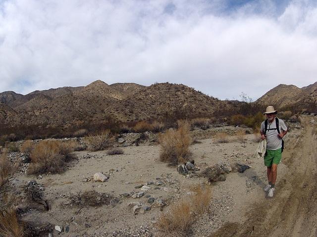 Long Canyon (21385)