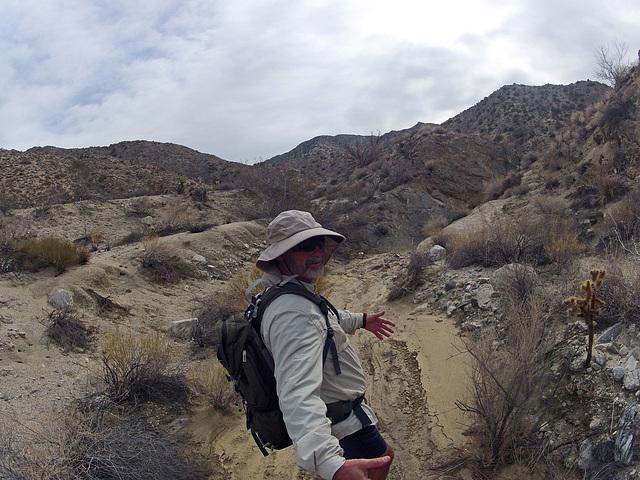 Long Canyon (21098)