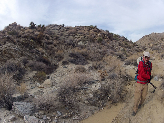 Long Canyon (21099)