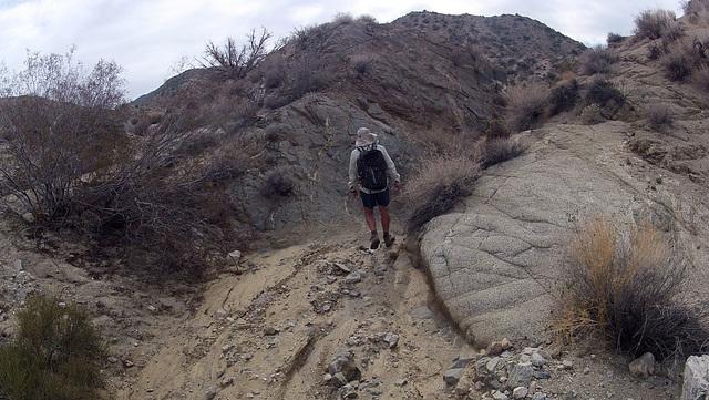 Long Canyon (21100)