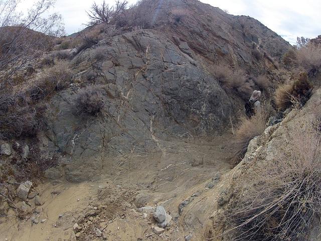 Long Canyon (21101)