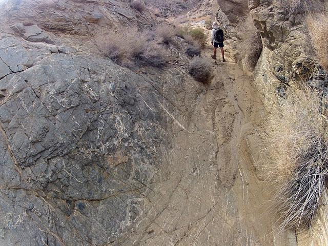 Long Canyon (21102)