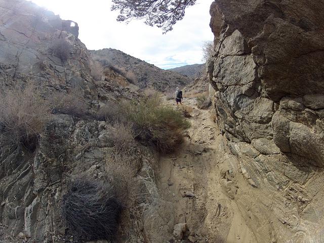 Long Canyon (21105)