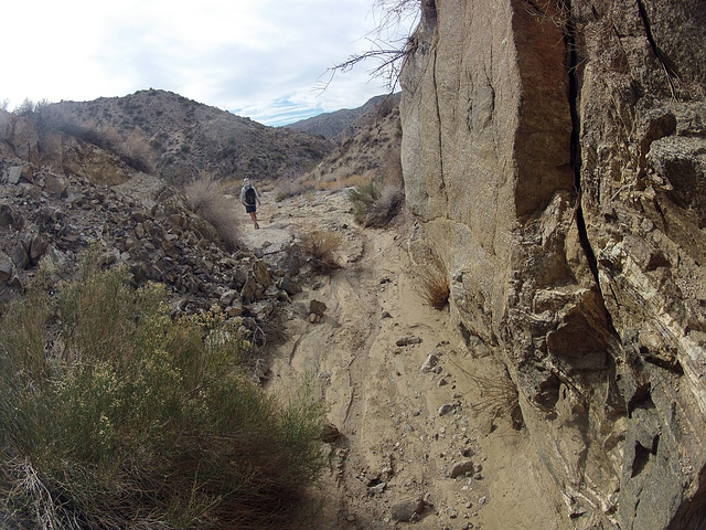 Long Canyon (21106)