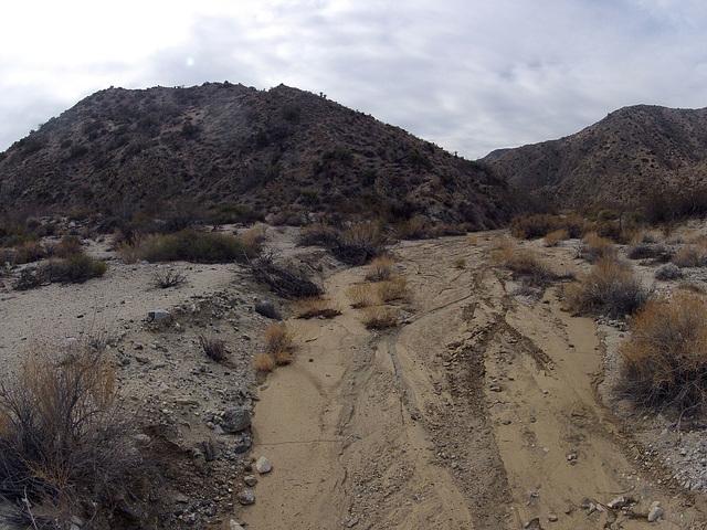 Long Canyon (21125)
