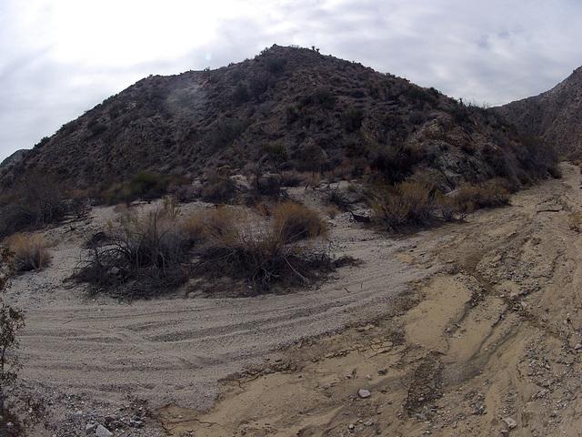Long Canyon (21128) Vehicle Tracks