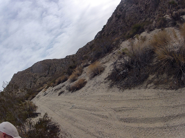 Long Canyon (21130) Vehicle Tracks