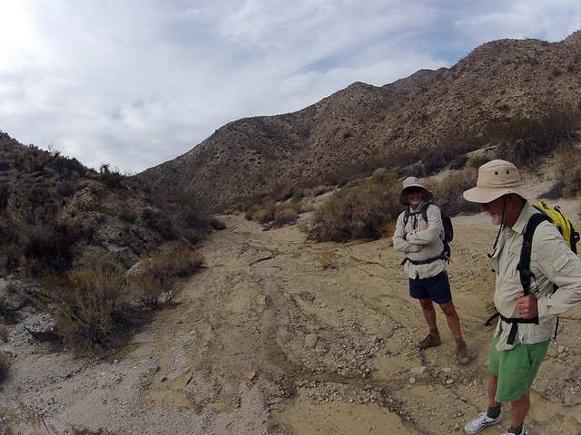 Long Canyon (21132)