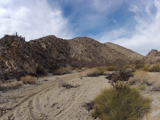Long Canyon (21262)