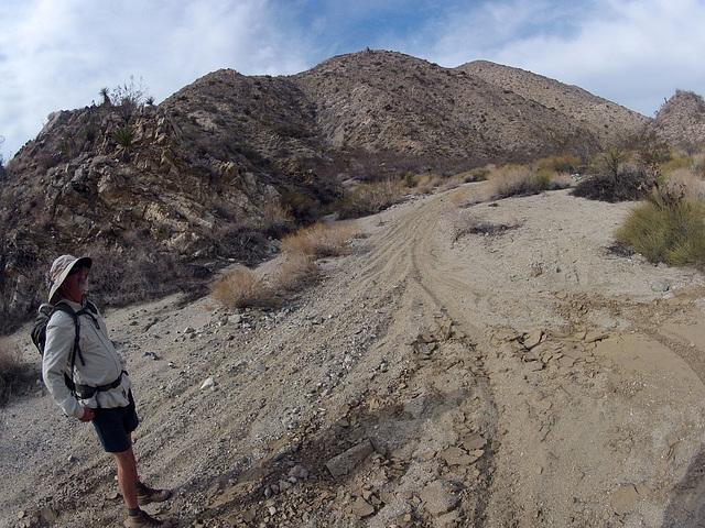 Long Canyon (21264)