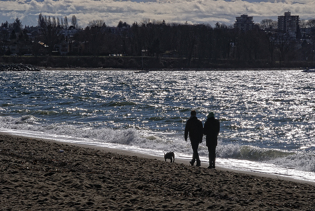 Walking the Dog - An afternoon on English Bay Beach