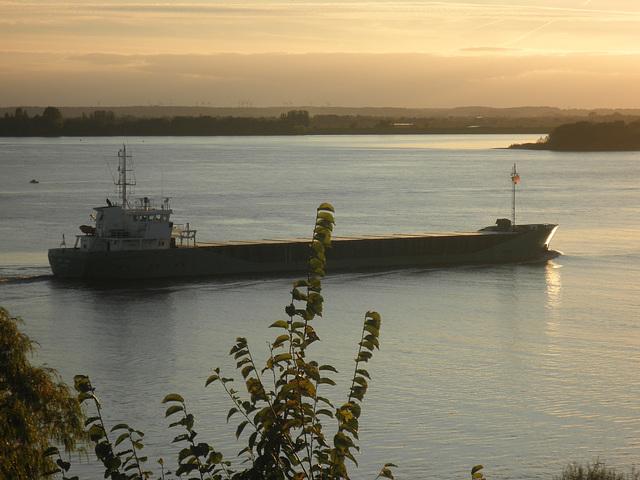 Kümo auf der Elbe