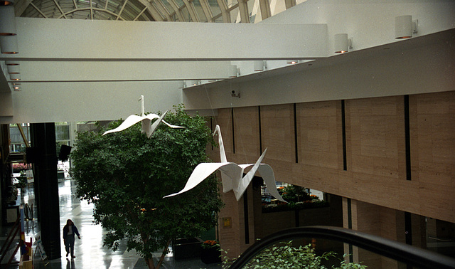 Origami Cranes Flying High
