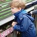 Dexter Watching the Model Railway