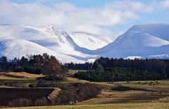 Cairngorm Mountains from Pityoulish, Near Aviemore, Scottish Highlands