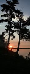 Sunset & trees Clayton lake 2003
