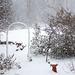 Arbor in snow