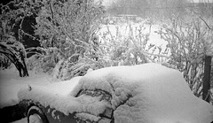 Image15a Snow on the Berkeley 1963