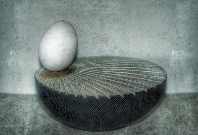 duck egg 6