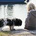 Der Hund und das Mädchen