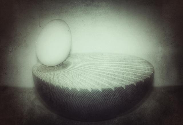 duck egg 5