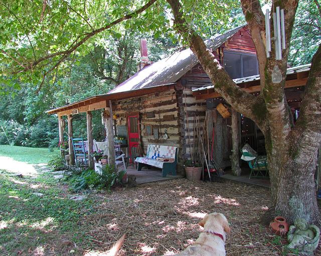 A Cozy Cabin