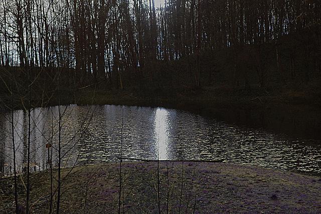 20140211 0085VAw Teich am Stumpfen Turm