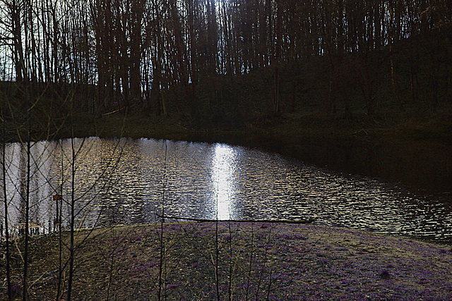 20140211 0084VAw Teich am Stumpfen Turm