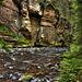 The Kamenice River