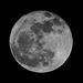 Wolf Moon/Micro Moon