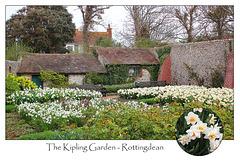 The Kipling Garden  - Rottingdean - 4.4.2014