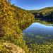 Harasov Pond