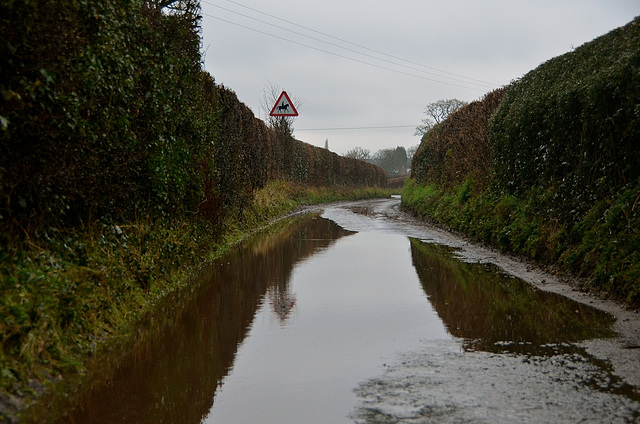 Very wet county lanes, Haughton