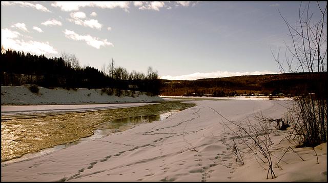 Quesnel River.