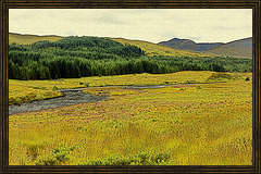 Scotland Painted