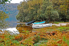 Autumn on Loch Morar