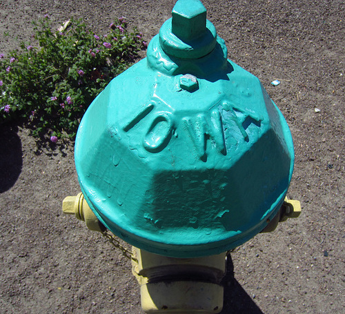 Iowa fire hydrant in Cathedral City (2136)