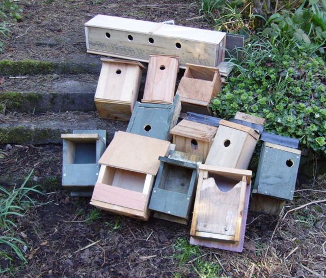 O&S - bird boxes
